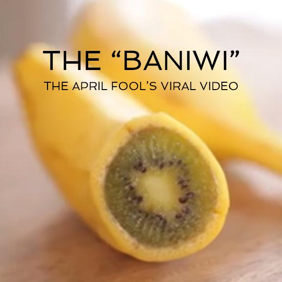 baniwi2